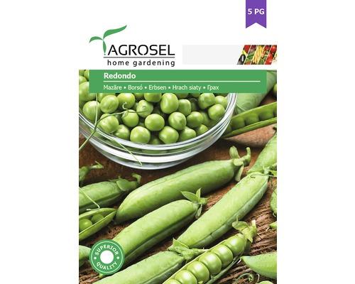 Seminte de legume, mazare Redondo