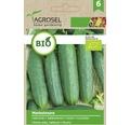 Seminte de legume, castraveti Marketmore Bio