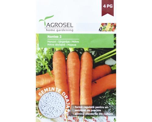 Seminte de legume, morcovi Nantes, drajate