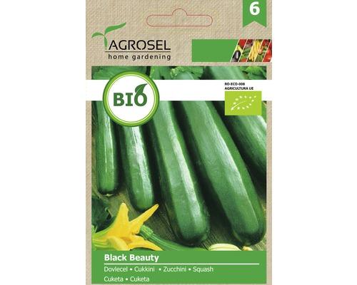 Seminte de legume, dovlecel Black Beauty Bio