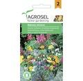 Seminte de flori, amestec pentru jardiniere