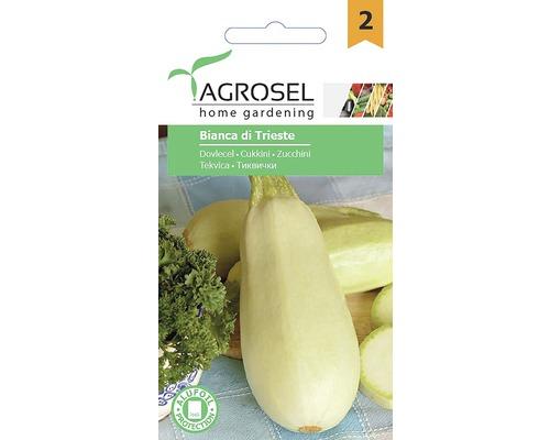 Seminte de legume, dovlecel Bianca di Trieste