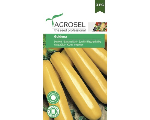 Seminte de legume, dovlecel Goldena