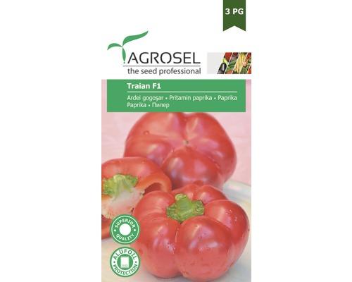 Seminte de legume banda, gogosar Traian