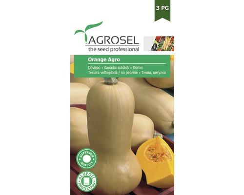 Seminte de legume, dovleac portocaliu