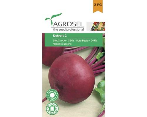 Seminte de legume, sfecla rosie Detroit