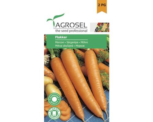 Seminte de legume, morcovi Flakker