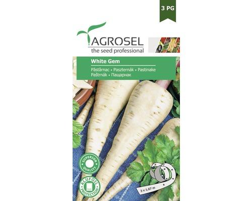Seminte de legume banda, pastarnac alb