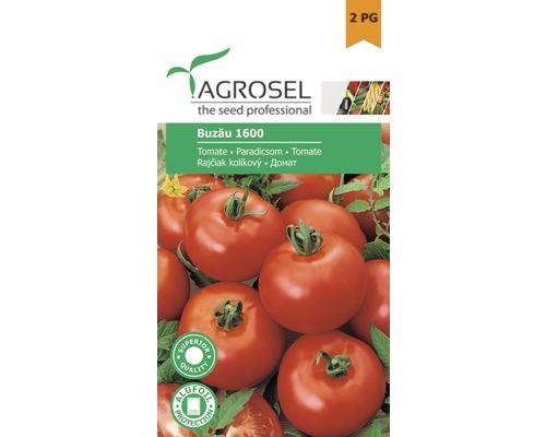 Seminte de legume, tomate Buzau 1600