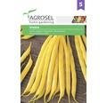 Seminte de legume, fasole tip fideluta Sondela