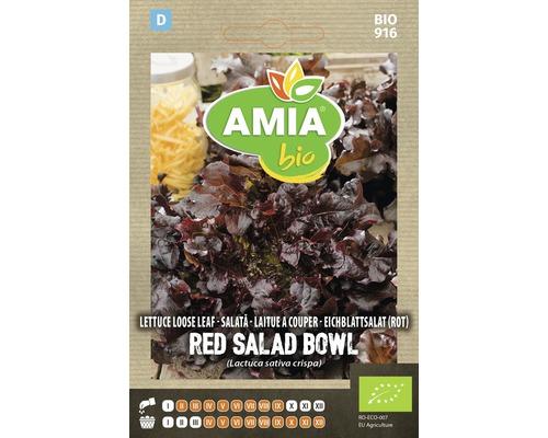 Seminte BIO de salata rosie