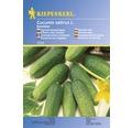 "Seminte de legume - castraveti pentru murat ""Excelsior"""