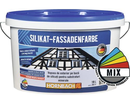 Vopsea de exterior pe baza de silicati pentru substraturi minerale, in nuanta dorita, 10 l