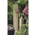 Trunchi decorativ bambus Ø 7-8 cm 200 cm