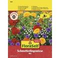 Floraself Select flori care atrag fluturii