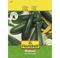 Floraself dovlecel 'Diamant' verde