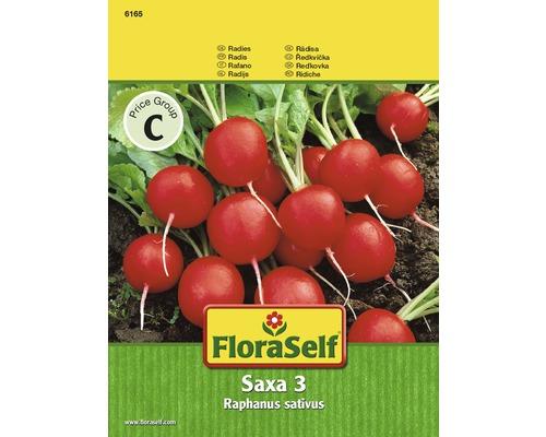 Floraself ridichi 'Saxa 3'