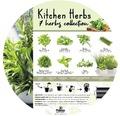 Set 7 plante aromatice de bucatarie