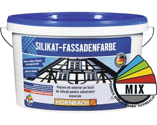 Vopsea de exterior pe bază de silicați pentru substraturi minerale, în nuanța dorită, 5 l