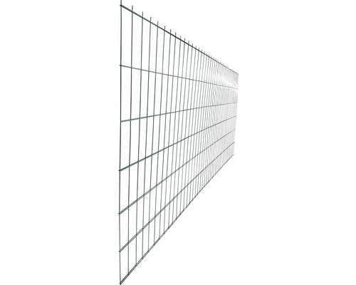 Panou gard 2D zincat 1230x2510 mm, 5/4/5mm verde