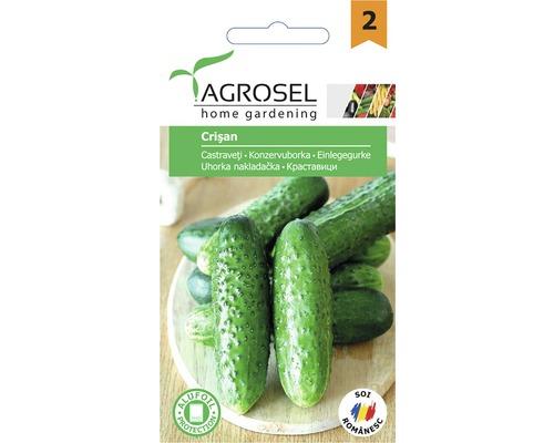 Seminte de legume castraveti Crisan
