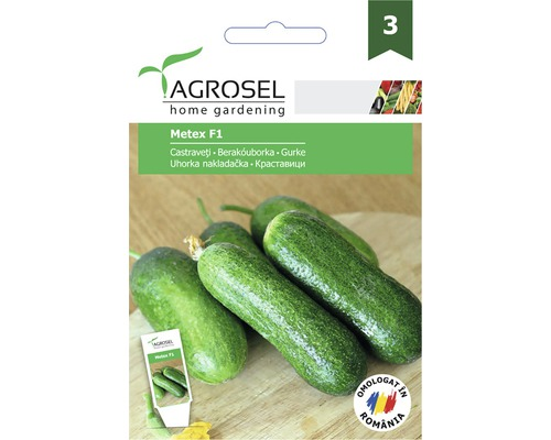 Seminte de legume castraveti Metex, banda PG3