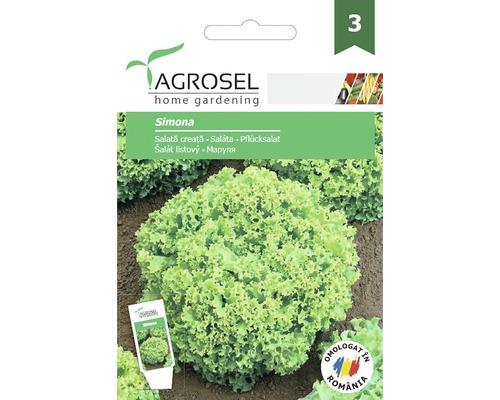Seminte de legume salata Simona