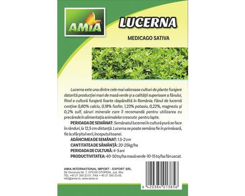 Lucerna, 1 kg