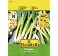 FloraSelf seminte de ceapa de primavara Kaigaro
