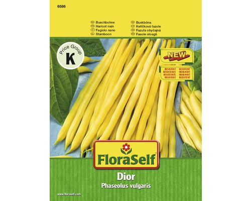 FloraSelf seminte de fasole boabe 'Dior'