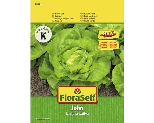 FloraSelf semințe de salată 'John'