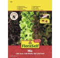 FloraSelf banda cu seminte de salata mix Lollo Bionda