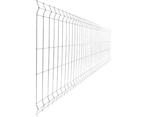 Panou gard 3D bordurat zincat 930x2510 mm, 5 mm argintiu