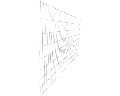 Panou gard 2D zincat 1630x2510 mm, 6/5/6 mm argintiu