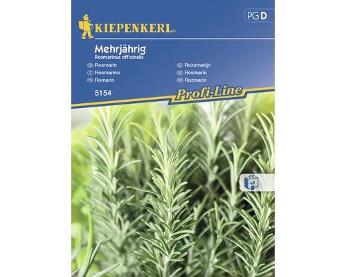 Seminte de rozmarin peren Kiepenkerl