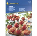 Semințe de legume Kiepenkerl, roșii Aranca