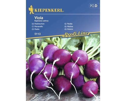 Seminte de legume Kiepenkerl, ridichi mov