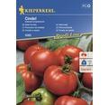 Seminte de legume Kiepenkerl, rosii pentru salata Cindel F1