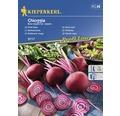Seminte de legume Kiepenkerl, sfecla rosie Chioggia