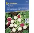 Semințe de legume Kiepenkerl, ridiche albă cu miez roșu