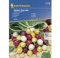 Seminte de legume Kiepenkerl, mix ridichi de Paste