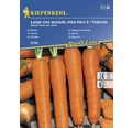 Seminte de legume Kiepenkerl, morcovi Vollenda