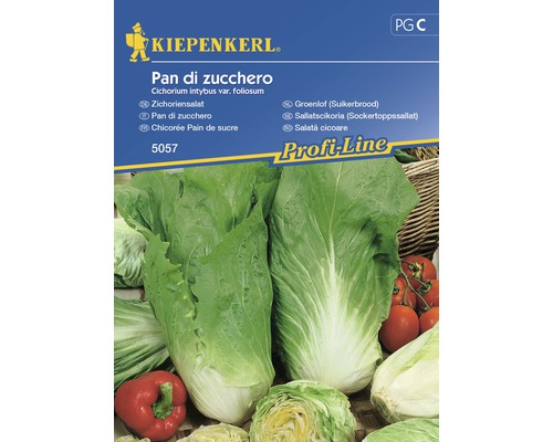 Seminte de salata de cicoare Pan Di Zucchero Kiepenkerl