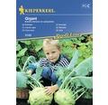 Semințe de legume Kiepenkerl, gulie gigant