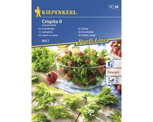 Seminte de salata creata II Kiepenkerl
