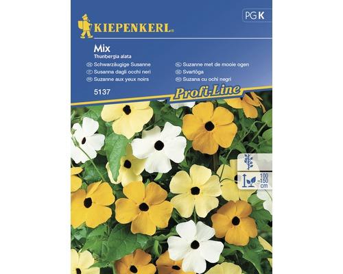 Seminte de flori Kiepenkerl mix Thunbergia