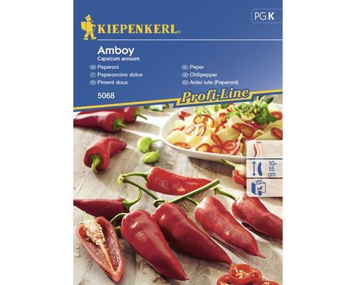 Seminte de legume Kiepenkerl, ardei iute Amboy