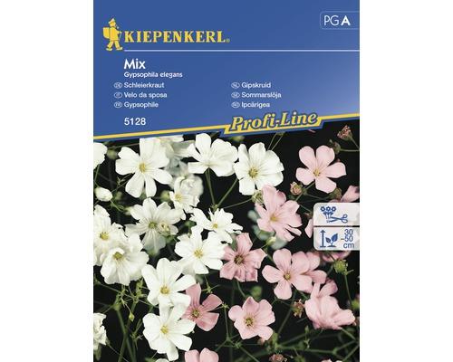 Seminte de Gypsophlia mix Kiepenkerl
