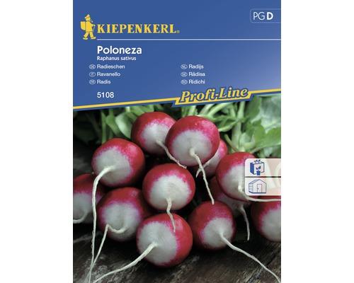 Seminte de legume Kiepenkerl, ridichi poloneze