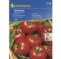 Semințe de legume Kiepenkerl, roșii pentru salată Harzfeur